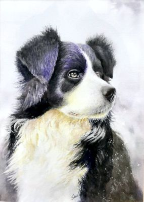 'Waiting for his Master' byShuli Han Dulley - Watercolour.